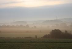 Dans la brume_3