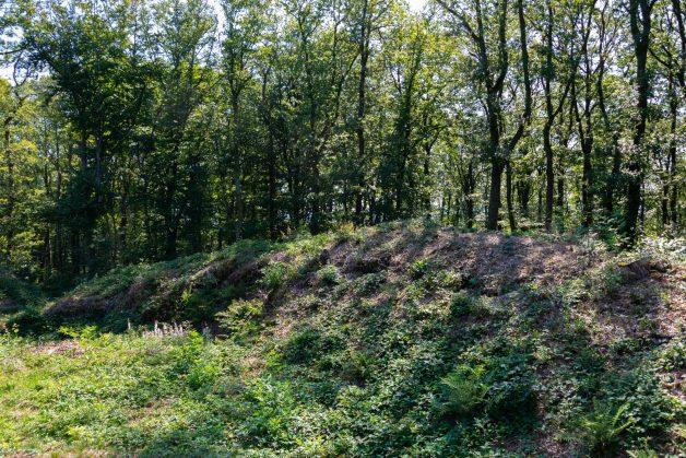 Burgknapp (8)