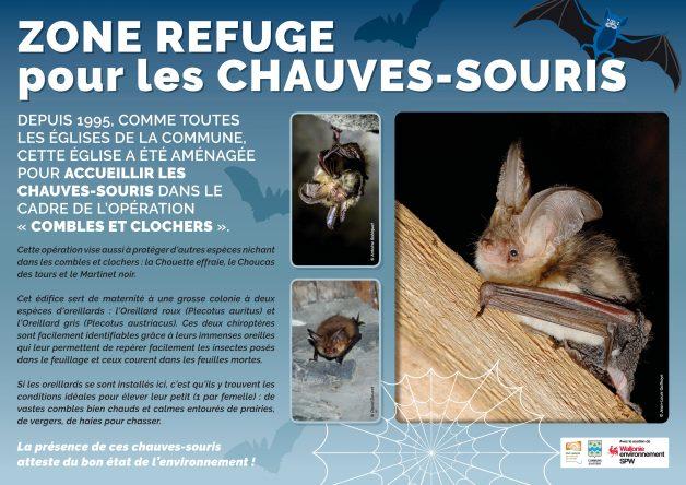 Panneau Didactique_Chauve-souris
